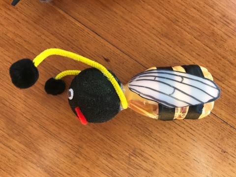 Small Bee, Smyrniotis 2020